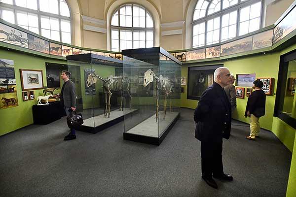 Megnyílt a modernizált Kincsem-Imperiál-kiállítás a Mezőgazdasági Múzeumban